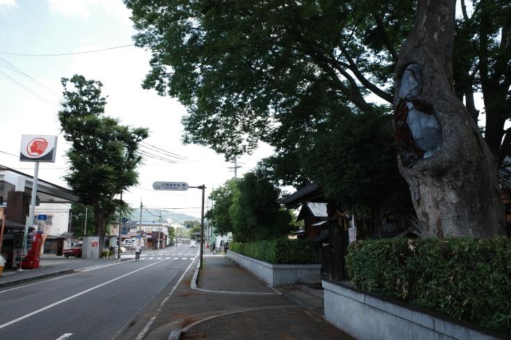 ブロンプトンと夏の長野県へ その5 ~ 松本城  自衛隊広報センター信濃_a0287336_19531539.jpg