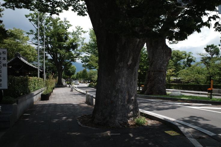 ブロンプトンと夏の長野県へ その5 ~ 松本城  自衛隊広報センター信濃_a0287336_20040232.jpg