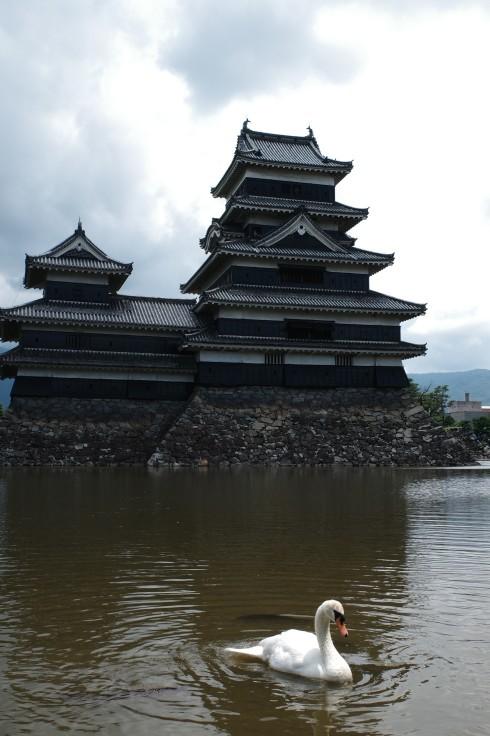 ブロンプトンと夏の長野県へ その5 ~ 松本城  自衛隊広報センター信濃_a0287336_20051165.jpg
