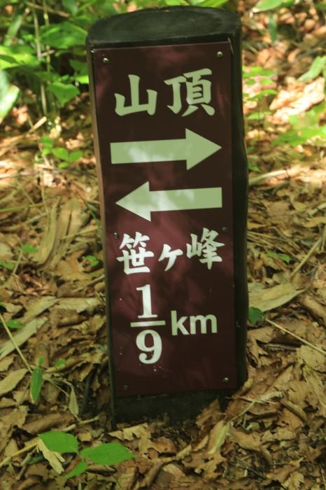 2021夏 登山の記録(火打山)_c0337257_20180440.jpg
