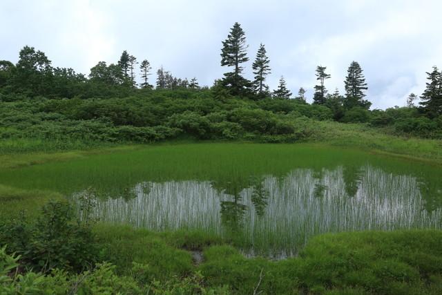 2021夏 登山の記録(火打山)_c0337257_20331189.jpg