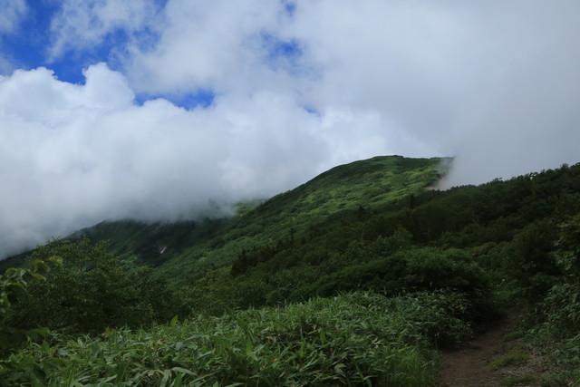 2021夏 登山の記録(火打山)_c0337257_20332486.jpg