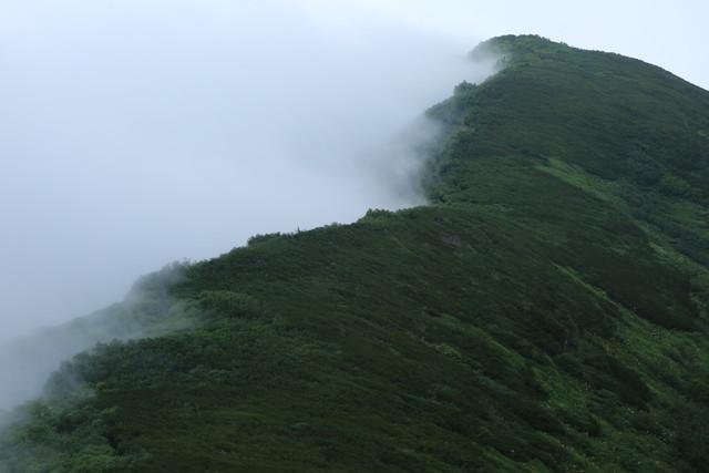 2021夏 登山の記録(火打山)_c0337257_20481495.jpg