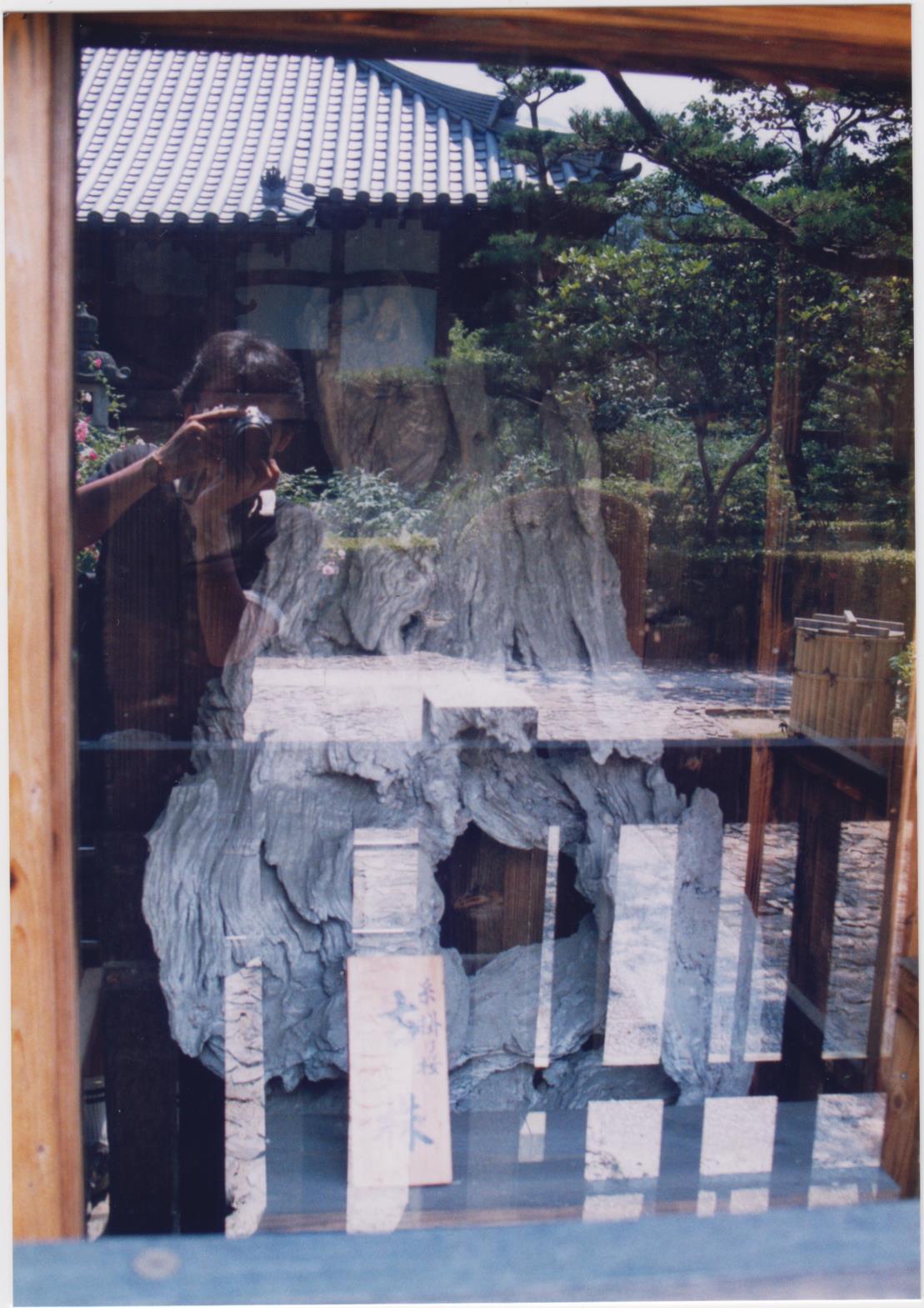 【悲しみの名所】日本枯名木あちこち〜最近から昔から【いにしえの香り】東京、川崎、鎌倉、京都、奈良、高知、愛媛、西表島、東北_b0116271_21183104.jpg