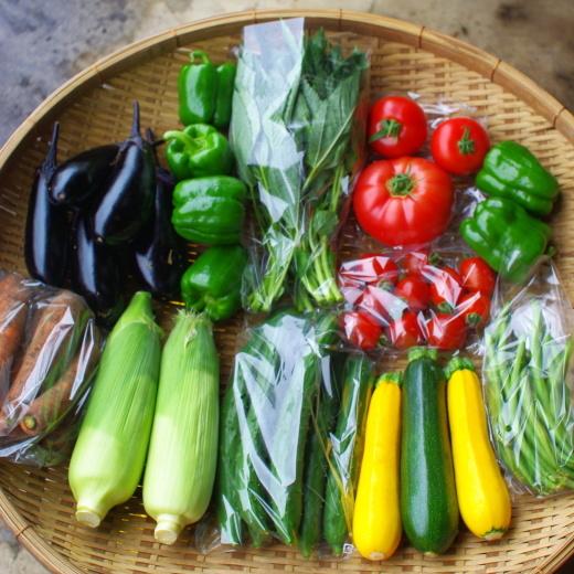 今週の野菜セット(8/10~8/14着)_c0110869_12431616.jpg