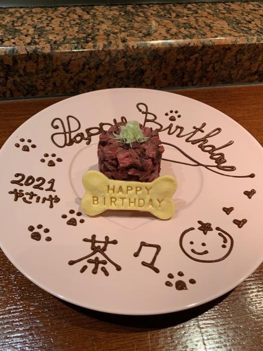 2021.8.9  茶々 15歳のお誕生日ですおめでとう_a0083571_13081976.jpg