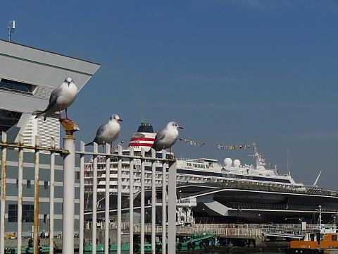 大桟橋でお会いしましょう。_b0141773_20431313.jpg