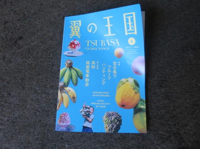 夢の甲子園_c0402074_11424521.jpg