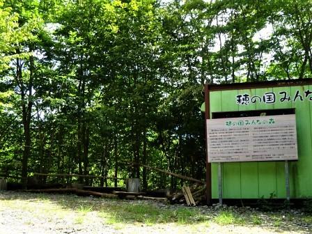 みんなの森活動日記_d0105723_18240284.jpg