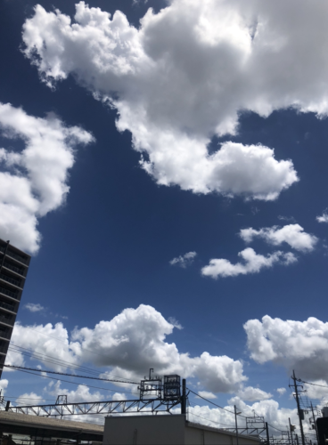 Late-summer Greeting[残暑お見舞い](8/13)_c0200361_22561312.png