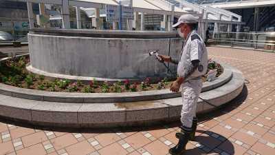 名古屋港水族館前花壇の植栽R3.8.4_d0338682_09540118.jpg