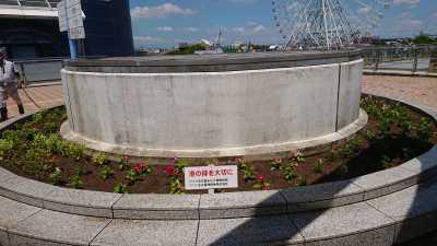 名古屋港水族館前花壇の植栽R3.8.4_d0338682_09544681.jpg
