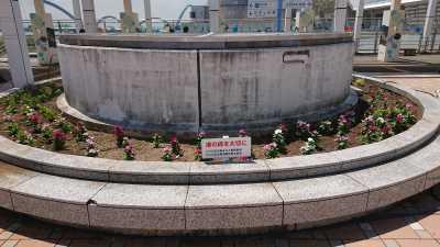 名古屋港水族館前花壇の植栽R3.8.4_d0338682_09550023.jpg
