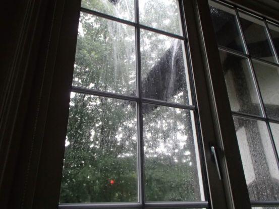 経験したことのない続いた激しい雨_f0064906_15520990.jpg