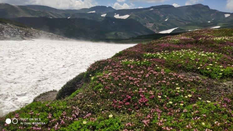 大雪山黒岳へ!!『神々の遊ぶ庭』と呼ばれる絶景をトレッキング - Trek Daisetsuzan National Park_b0108109_22483791.jpeg