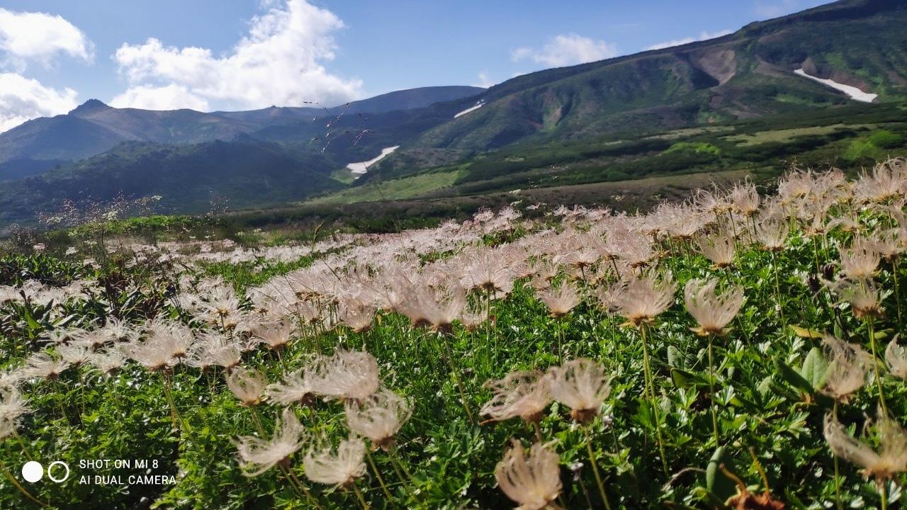大雪山黒岳へ!!『神々の遊ぶ庭』と呼ばれる絶景をトレッキング - Trek Daisetsuzan National Park_b0108109_22484976.jpeg
