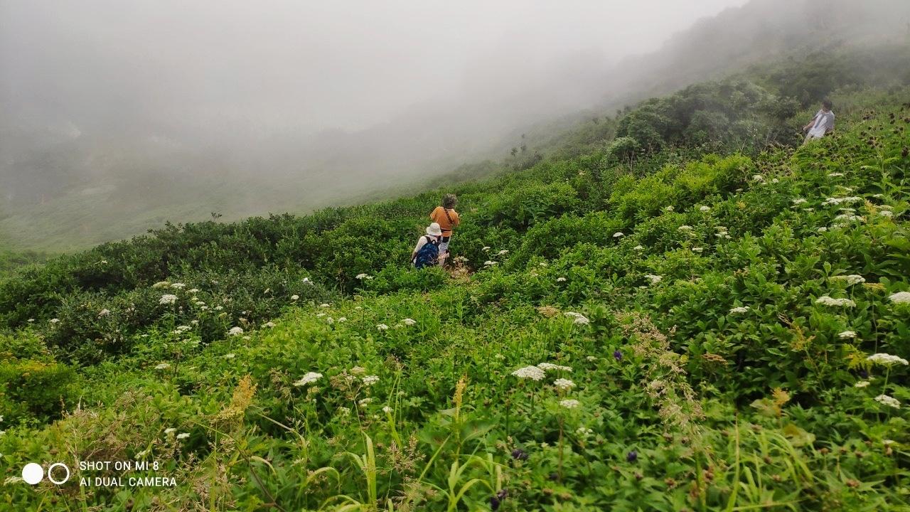 大雪山黒岳へ!!『神々の遊ぶ庭』と呼ばれる絶景をトレッキング - Trek Daisetsuzan National Park_b0108109_22532960.jpeg