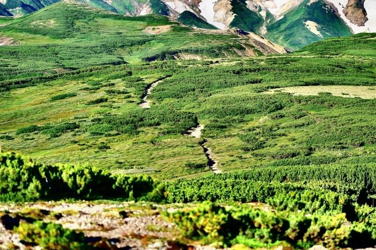 大雪山黒岳へ!!『神々の遊ぶ庭』と呼ばれる絶景をトレッキング - Trek Daisetsuzan National Park_b0108109_23022151.jpeg