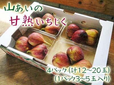 『甘熟いちじく』数量限定、完全予約制好評発売中!いちじくは不老長寿の果実とも呼ばれているフルーツです_a0254656_16553785.jpg