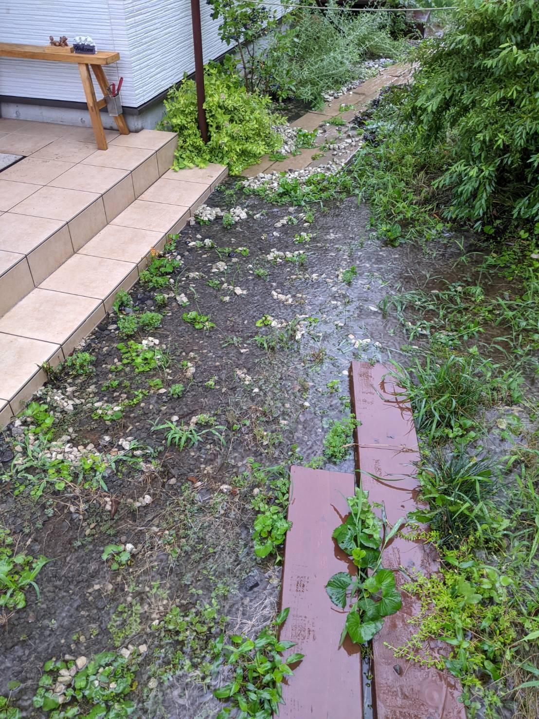 2021年お盆の大雨の記録_c0110869_06442799.jpg