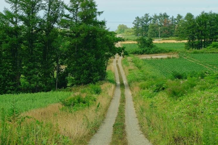 斜里の広域農道探訪 - Rural landscape with straight farm road of Shari_b0108109_21463910.jpeg