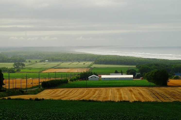 斜里の広域農道探訪 - Rural landscape with straight farm road of Shari_b0108109_21475183.jpeg
