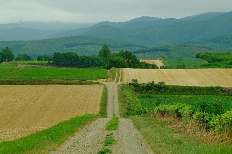 斜里の広域農道探訪 - Rural landscape with straight farm road of Shari_b0108109_21493695.jpeg