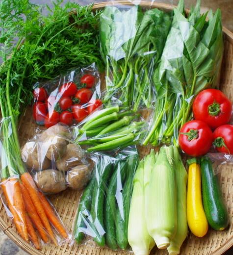 今週の野菜セット(8/17~8/21着)_c0110869_12552700.jpg