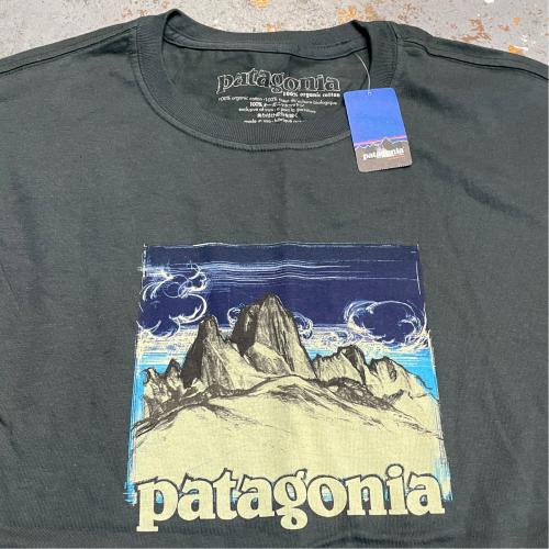 ◇ PATAGONIA HIROSHIGE T-SHIRTS & 休みのお知らせ ◇_c0059778_17301212.jpg