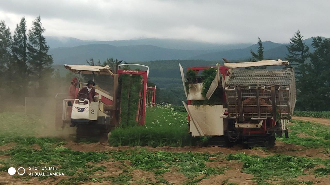 斜里の広域農道探訪 - Rural landscape with straight farm road of Shari_b0108109_15034799.jpg