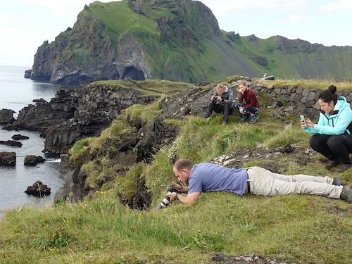 パフィンを楽しんだウエストマン諸島のヘイマエイ島_c0003620_00461856.jpg