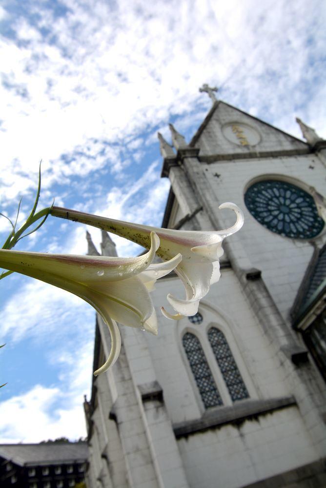 聖ザビエル天主堂とシロユリ_e0373930_19324523.jpg