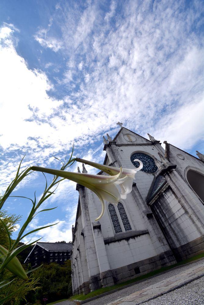 聖ザビエル天主堂とシロユリ_e0373930_19330058.jpg