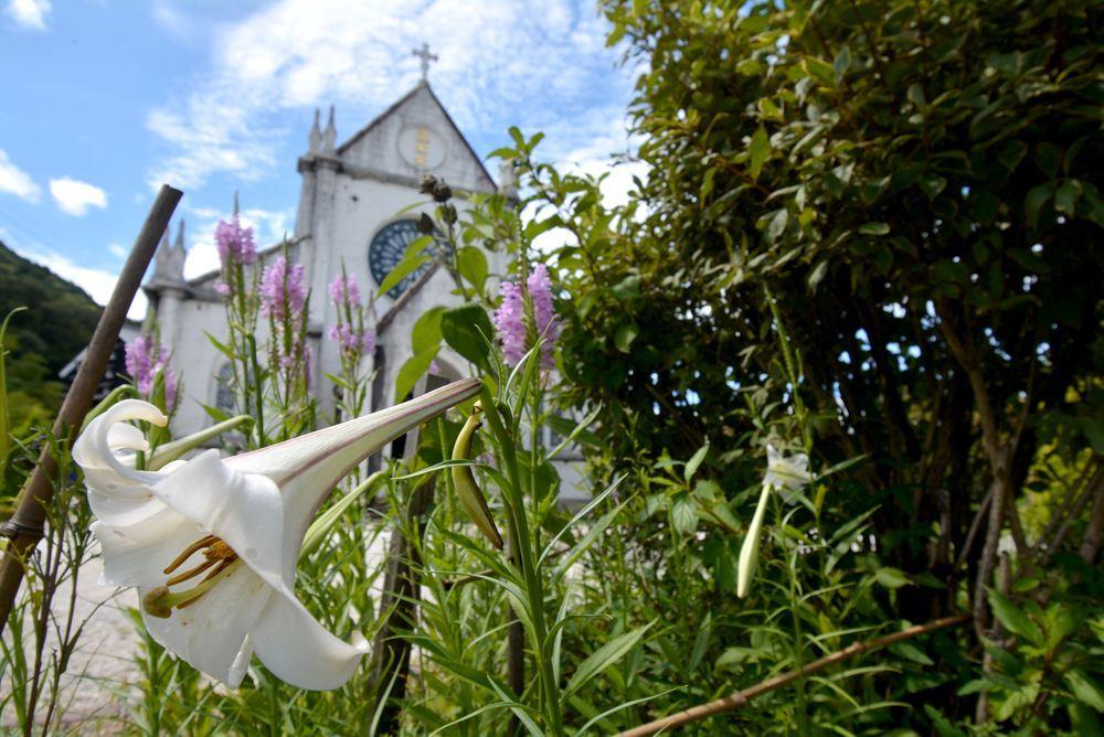 聖ザビエル天主堂とシロユリ_e0373930_19330105.jpg