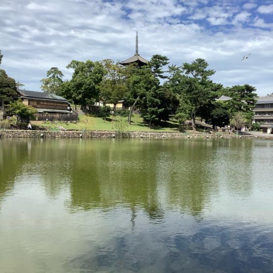 奈良_c0029332_19082678.jpg