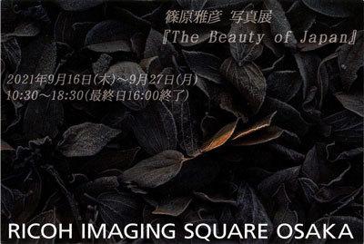 """篠原雅彦「Another Story of""""The Beauty of Japan""""」「The Beauty of Japan」(大阪)_c0142549_14491923.jpg"""
