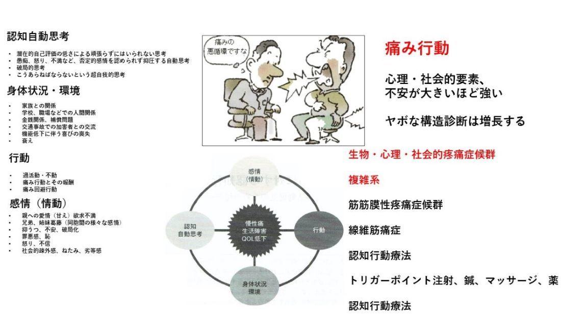 慢性痛は高度に発達した人間の脳のせい_b0052170_18242193.jpg