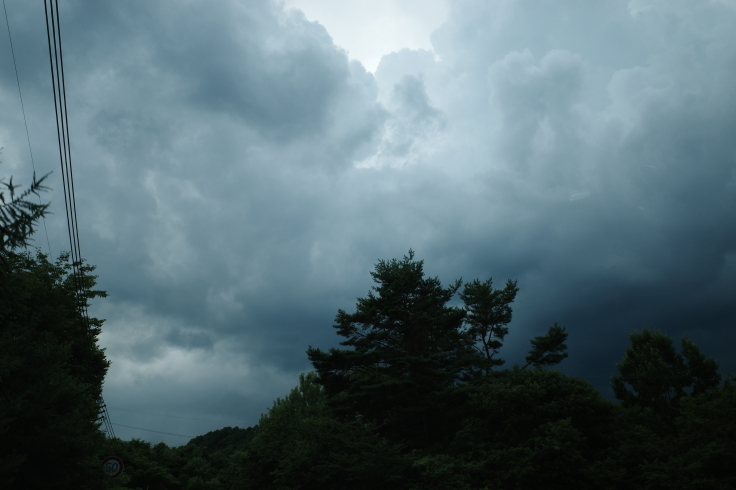 ブロンプトンと夏の長野県へ その15 ~ ジェット二宮金次郎像を見に伊参スタジオ公園へ_a0287336_08353323.jpg
