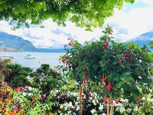 スイス旅行Ⅰ_d0277949_23292976.jpg