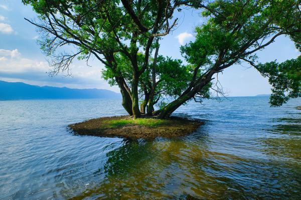 日本風景写真協会(JNP)presents「ニッポン津々浦々、撮影地案内!」(滋賀編)3/3回_c0142549_14023758.jpg