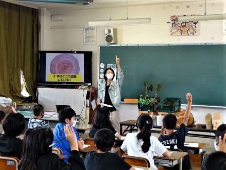 小学校訪問(一緒に森へ行こう) 豊川市立桜木小学校_d0105723_18113775.jpg