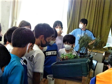 小学校訪問(一緒に森へ行こう) 豊川市立桜木小学校_d0105723_18131127.jpg