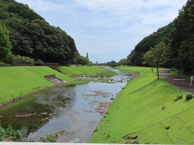 大白公園散策(その1)(撮影:8月23日)_e0321325_14172016.jpg