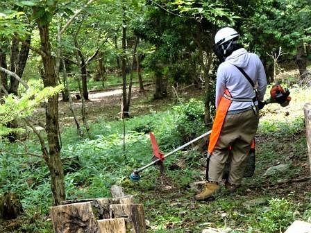 企業の森活動日記 サーラエナジー㈱ サーラの森_d0105723_20293063.jpg