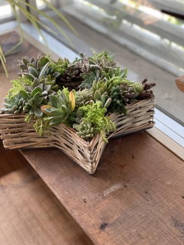 多肉植物の寄せ植え教室 ②_e0366161_20193366.jpeg