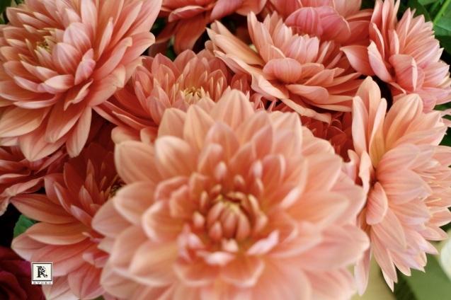 お花の香りでリフレッシュ✨_c0128489_18471633.jpeg