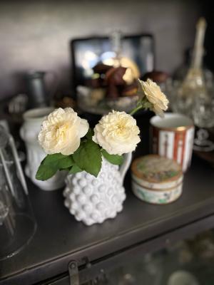 白バラを_c0198321_00030592.jpg