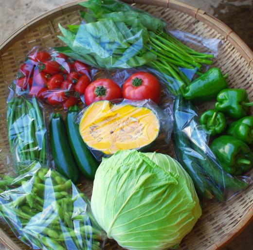 今週の野菜セット(8/31~9/4着)_c0110869_13495701.jpg