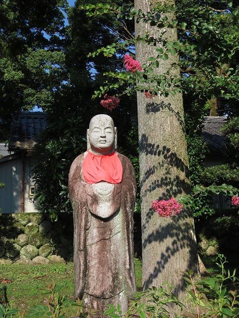 金剛寺の百日紅の花_e0321325_14390094.jpg