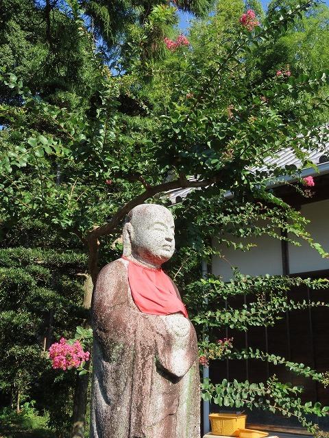 金剛寺の百日紅の花_e0321325_14395763.jpg